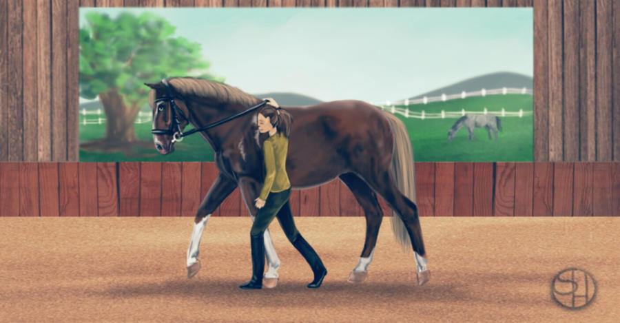 .:I The calm one I:. -2nd place by SunshineEliteStables