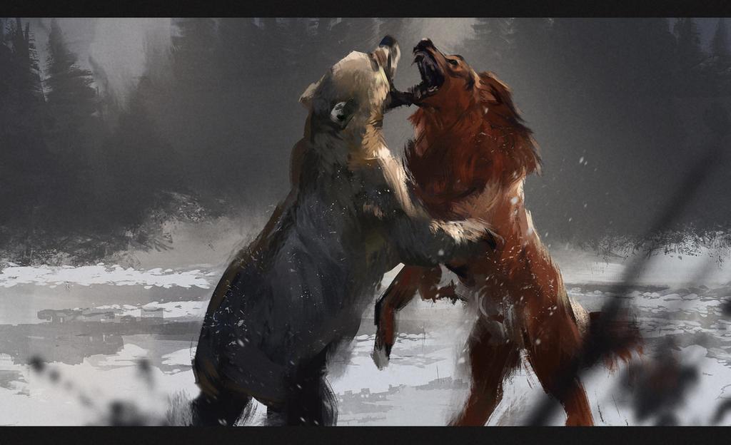 BEAR FIGHT by diademata