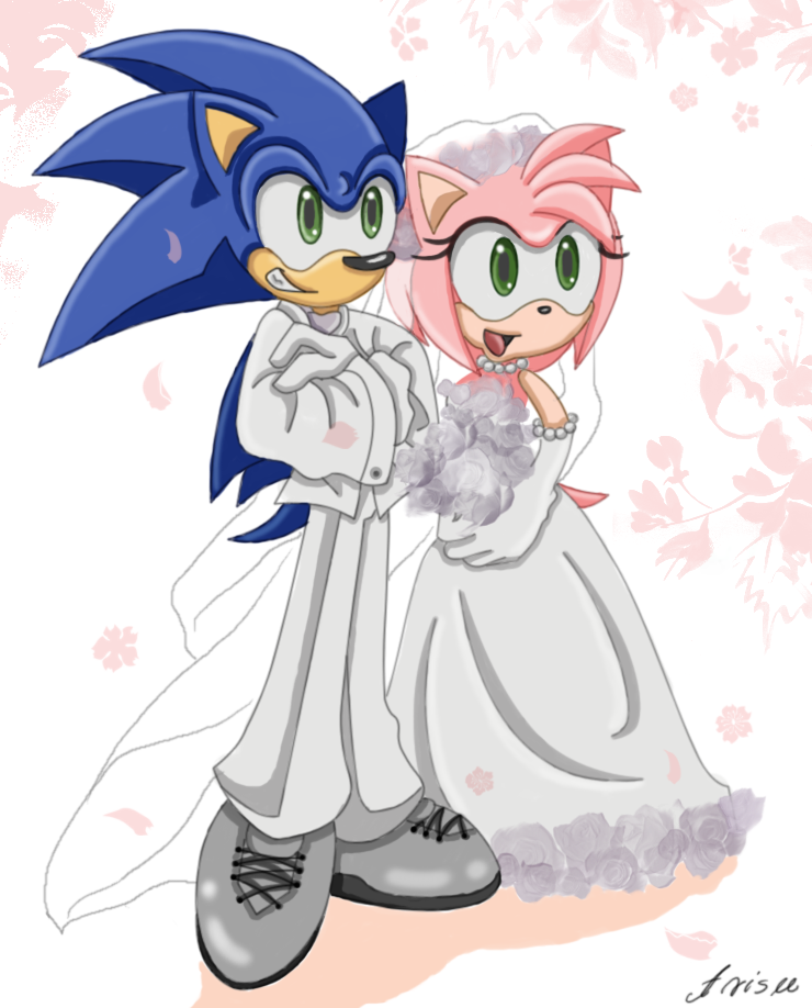 AllesiaTheHedge 458 41 SonAmy Wedding Day In Color By ArisuAmyFan