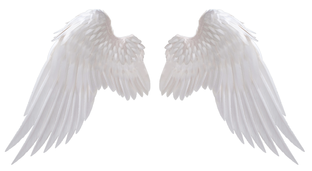angel wings by hz designs on deviantart