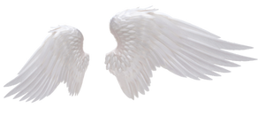 Angel Wings 02