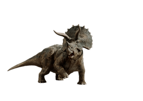 Triceratops by HZ-Designs