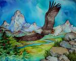.:Commission - Eagle in the sky:.