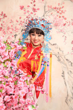 Chinese Oper Dream I