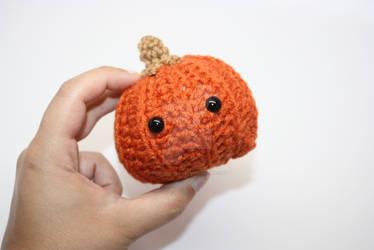 Pumpkin season is approaching!