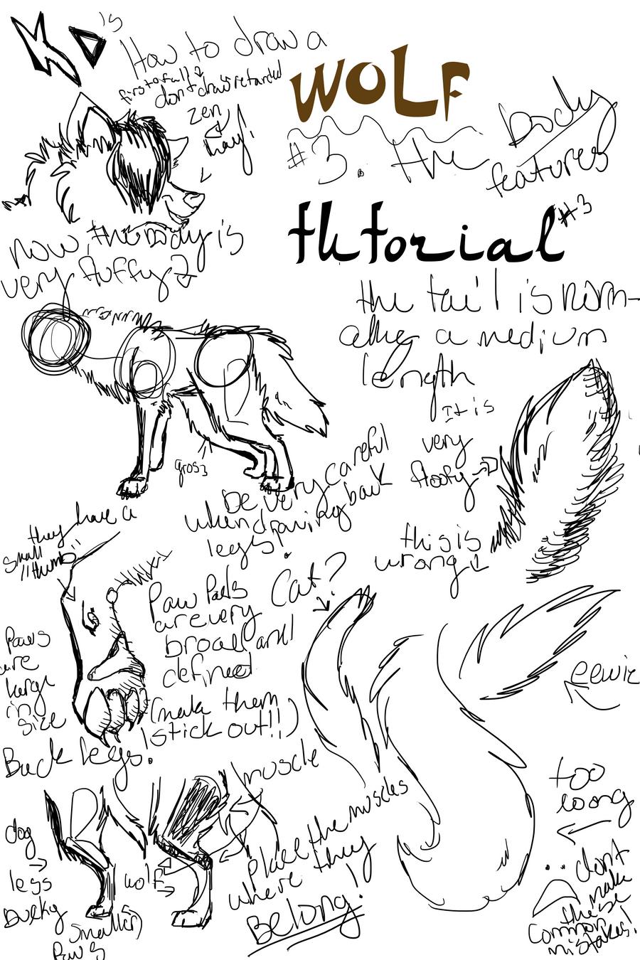 aj how to draw a wolf