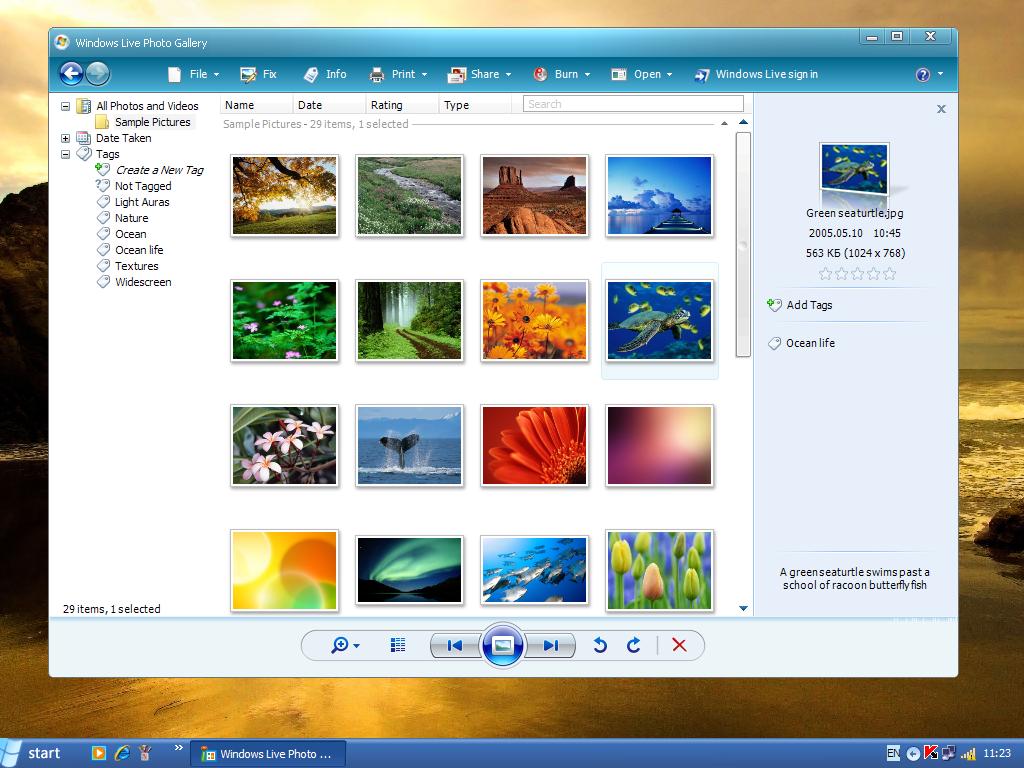 Updating windows live photo gallery