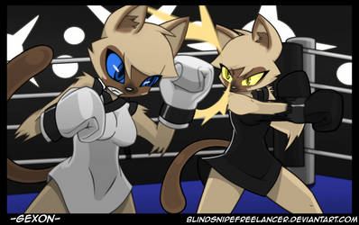 Commission - Cat Fight by BasilLoon