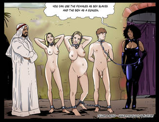 Sold to the Harem by Slaverycomics