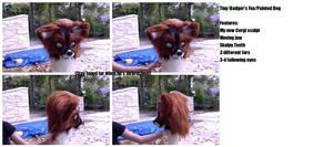 Fox/Painted Dog