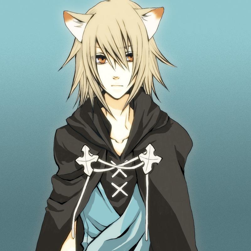Anime Katzenmenschen