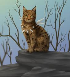 Cat by Feimen