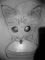 my cat drinking water by rcatstott