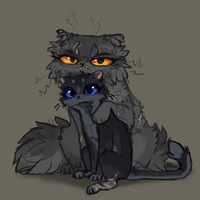 Yellowfang and Cinderpaw by GrayPillow