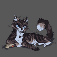 Hawkfrost by GrayPillow