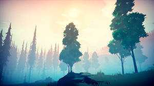 Among Trees - Trees Among Pines