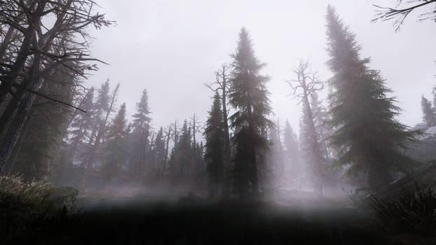 TES Skyrim - Foggy Swamp