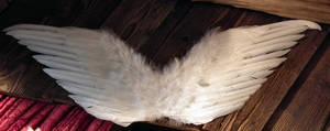Pair of white wings