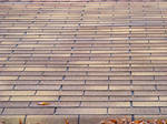 Ashalt Shingle Roof 01