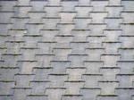 Ashalt Shingle Roof 02
