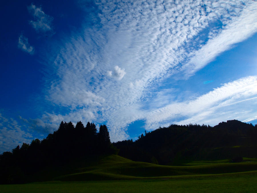 Trees Sky Clouds 01 by Limited-Vision-Stock