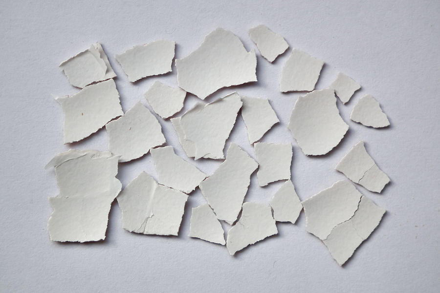 Eggshell Puzzle 1 by Limited-Vision-Stock