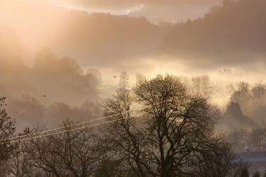 Beautiful Morning by BWozniakPhotography