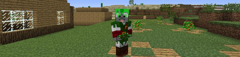 my Minecraft skin