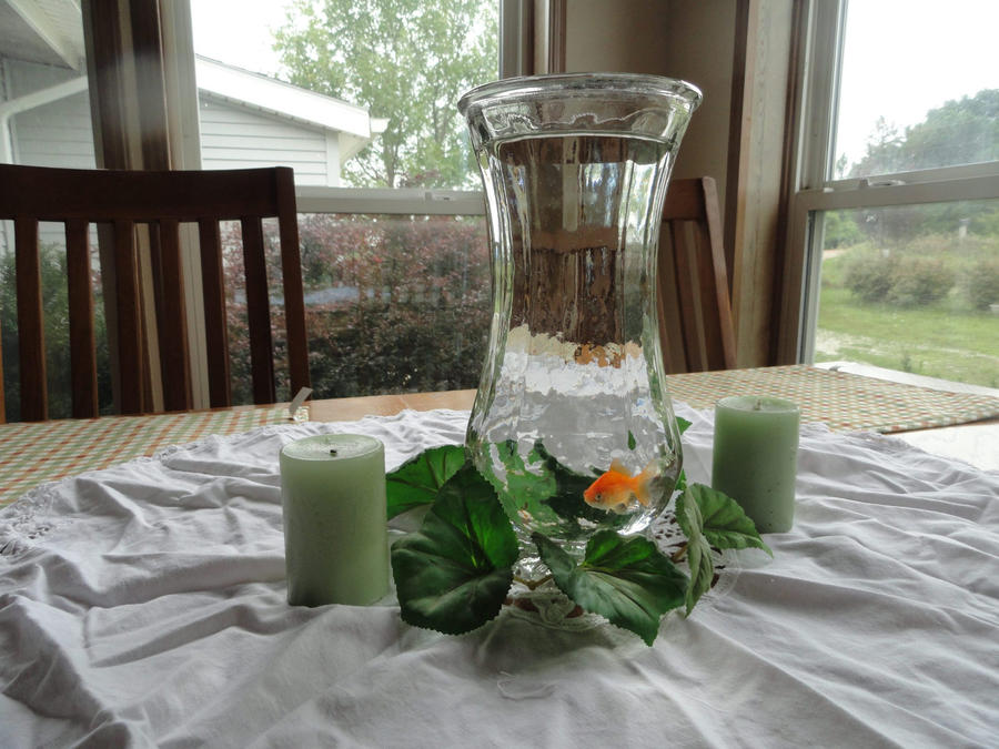 Goldfish centerpiece by aaron on deviantart