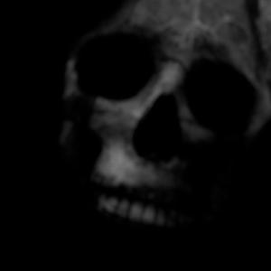 Vordh0sbn's Profile Picture