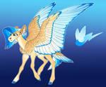Spark Chaser: Fluttershy x Rainbow Dash