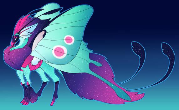Mothlight chrysalis x novo
