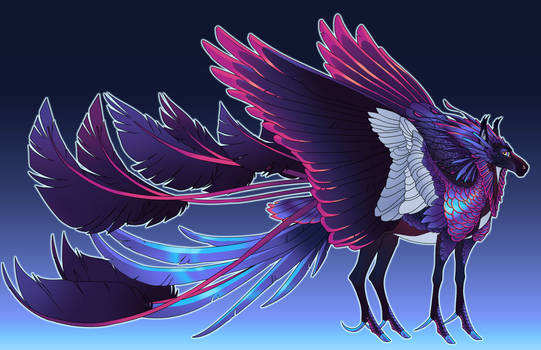 Commission for nocturnalowlet
