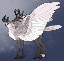 Caribou Griffon Commission