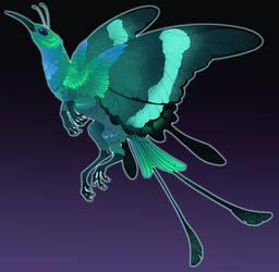 Hummingbird Butterfly Griffon