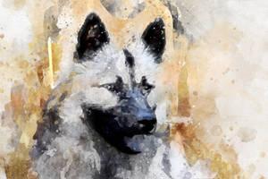 Free-dog-3-watercolor 1920
