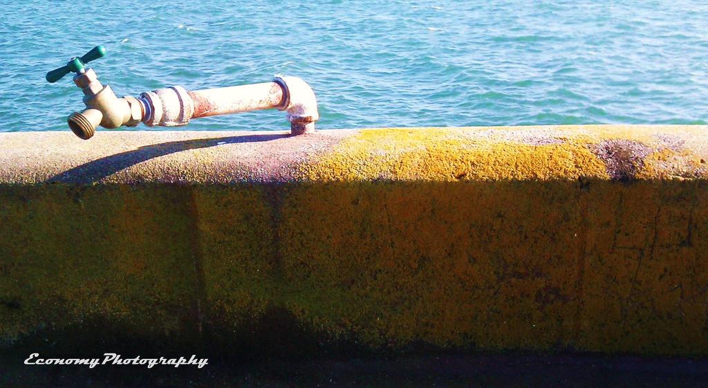 Fish Washing Station by luckylisa