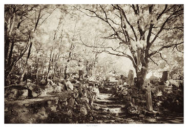 enchanted shrine by garrit