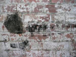Texture: Stone Wall II