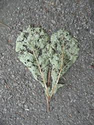 Stock: Heart Shaped Leaf I