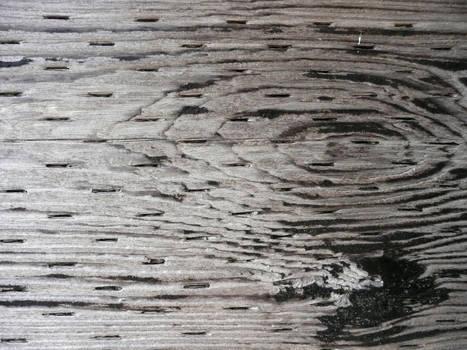 Texture: Wood Grain I