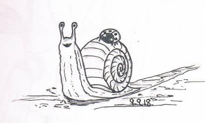 SlugSketch by Sushigo