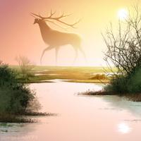 Wetlands by wingedwolf94