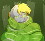 Wrapped Up Snugly