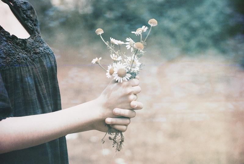 Poklanjam ti sliku Marguerite_by_0lalaa