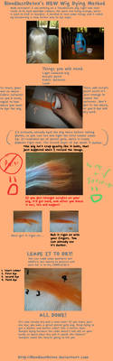 How To Dye a Wig Tutorial. NEW METHOD.