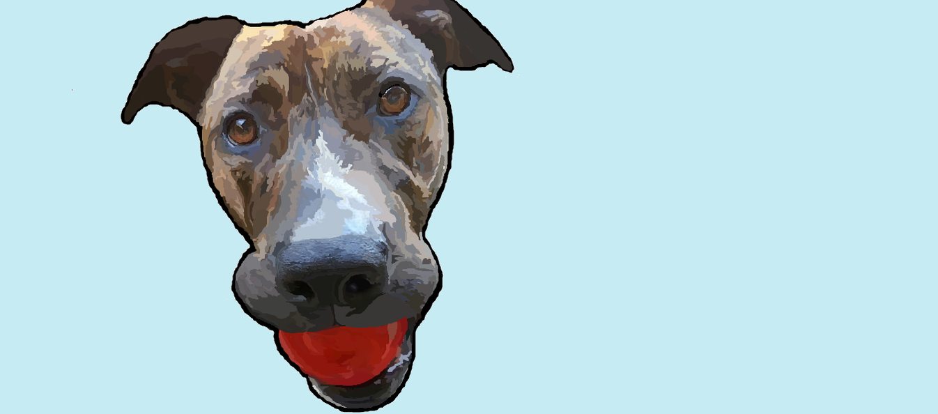 Dans Dog by Laptop-MSpainter