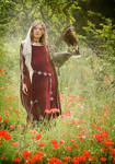 Queen Morgause and Falcon by Costurero-Real