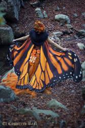 Monarch Butterfly cape