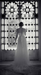 The Swan princess dress
